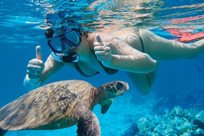 Makena Turtle Town Eco Adventure in Maui