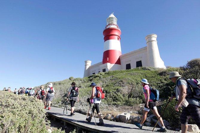 Cape Town, Private Tour, The Best Of Cape Agulhas