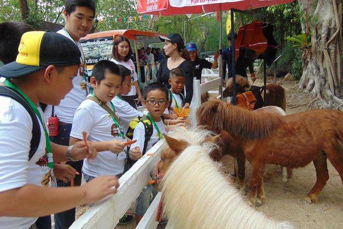 Half Day Tour @Chiangmai Zoo & Aquarium
