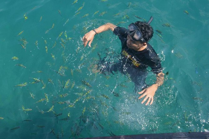Full-Day 4 Island Tour from Koh Lanta (by Speedboat)