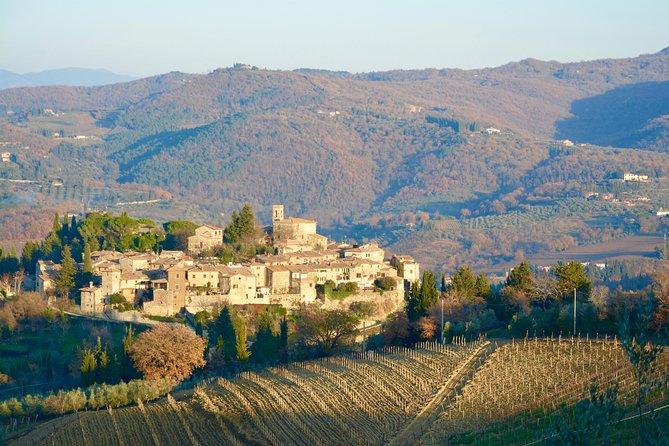 Private Tour: Chianti Region Tour by Minivan