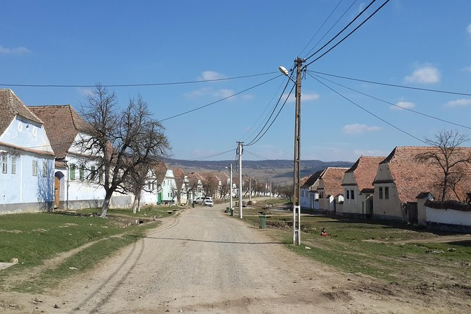 Viscri Village