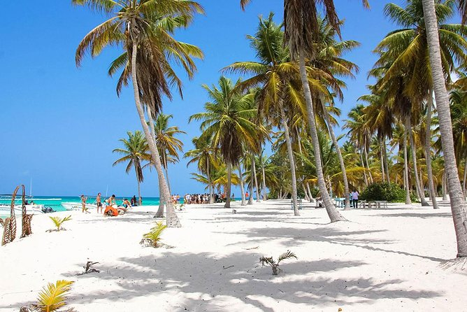 All-Inclusive Saona Island Full Day Trip and Catamaran Cruise from Santo Domingo photo 11