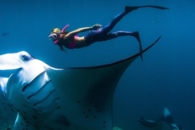 Manta Point Dive And Crystal Bay Dive Sites In Nusa Penida One Day All Included