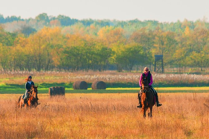 Horseback Riding in the Hungarian Puszta, takes you far beyond your expectations