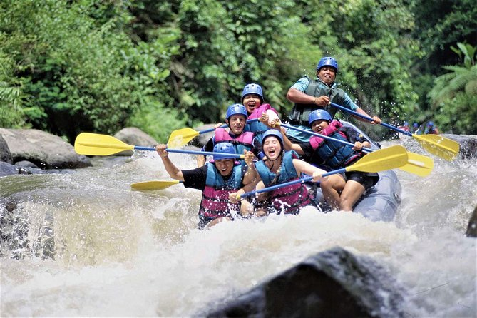 Enjoy The Excited Bali White Water Rafting with Ubud Tour Including Lunch