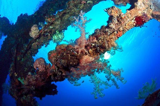Tulamben Dive Trip