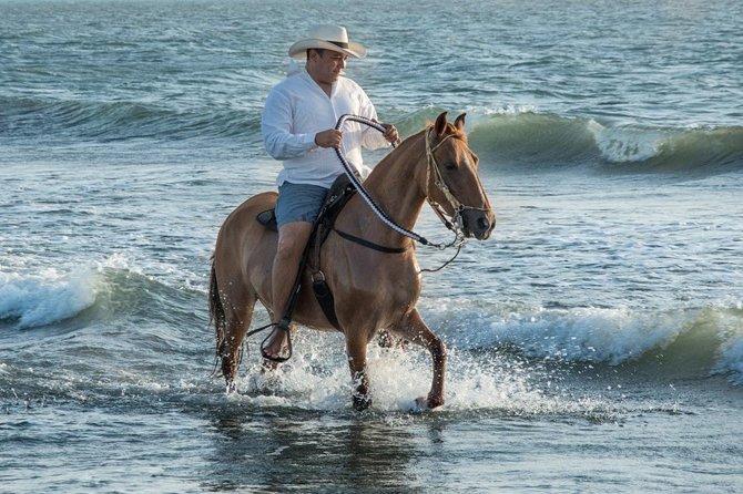 Beach horseback riding with Colombian Paso horses.