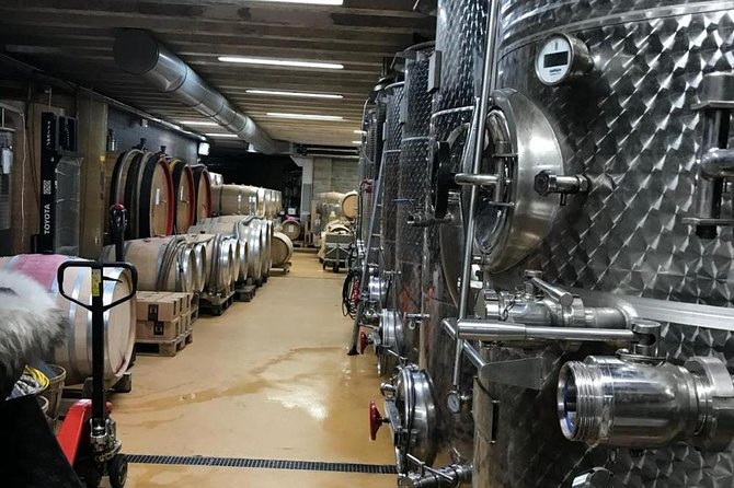 Cheese dairy farm, winery, olive oil mill, ham and sausage factory, private tour photo 6