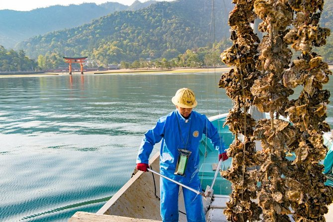 The First Tour in Hiroshima - An Oyster Harvest with Fishermen on the Boat