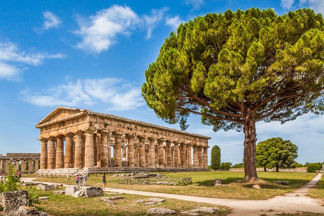 PAESTUM: the Greek Temples and the Archaelogical Museum private tour photo 1