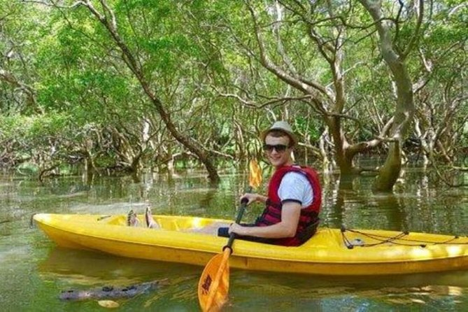 Mangroves Magic - Goa Kayaking Experience