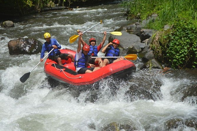 Ayung White Water Rafting and Tanah Lot Sunset Tour : Bali Best One Day Trip