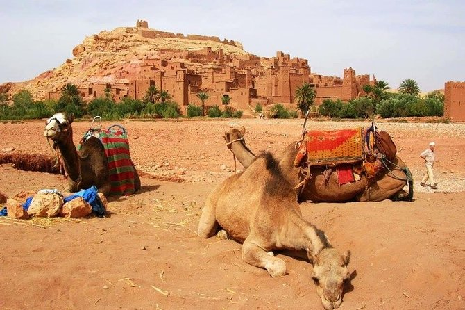Day trip to Ouarzazate, Atlas Mountains and Unesco Kasbahs from Marrakech photo 8