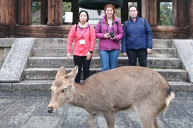 Nara Todai-ji Lazy Bird Tour  photo 4