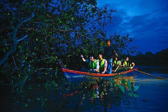 Kuala Selangor Fireflies Tour Include Seafood Dinner (Free Boat Ride)