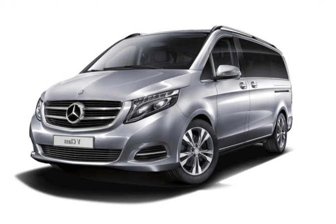 Arrival Private Transfer Pulkovo Airport LED to St Petersburg City by Luxury Van photo 1