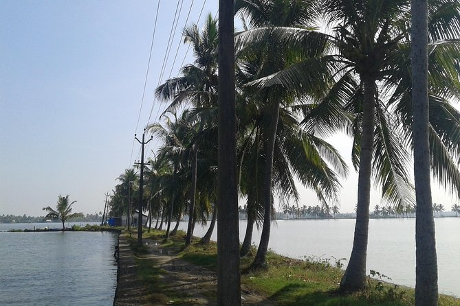 Kochi Village Life Experience tour - The Real Tour of Kochi !