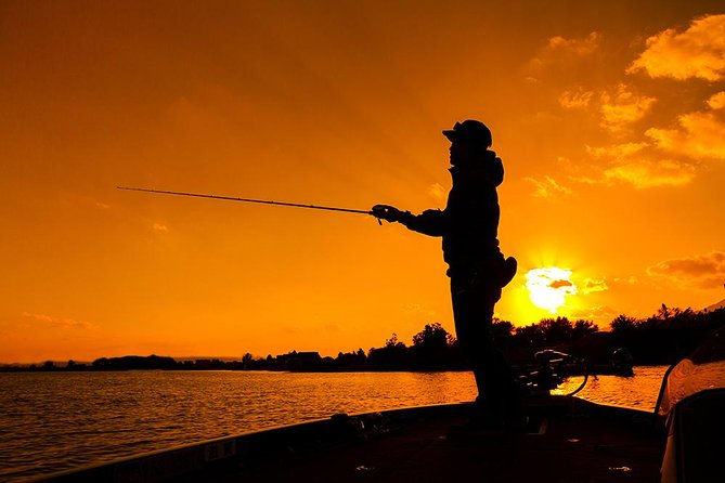 Sunset Fishing and or Sightseeing Boat Tour Trip in Naples Bay, FL and the Gulf