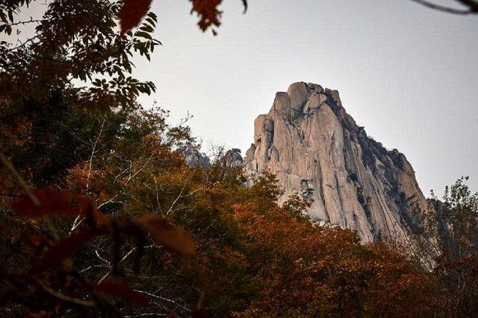 Bukhansan Hiking and Korean Sauna Tour with Korean Chicken Soup