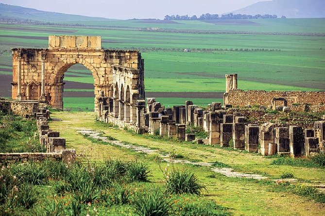 Full day Meknes, Mly Idriss and Volubilis