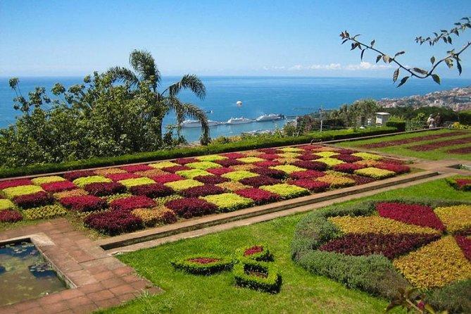 Monte & Botanical Garden Tour