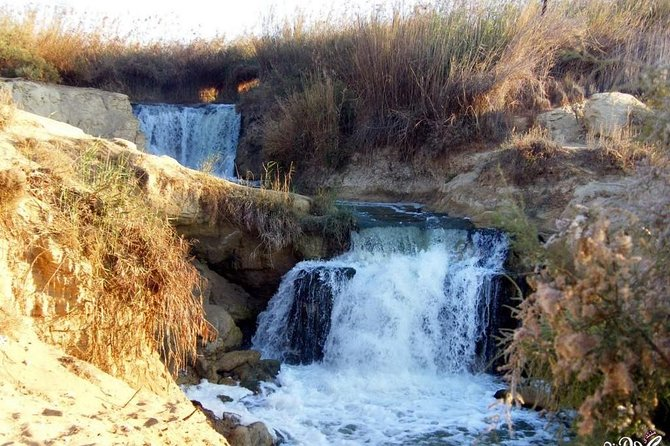 Private Day Tour to El Fayoum from Cairo