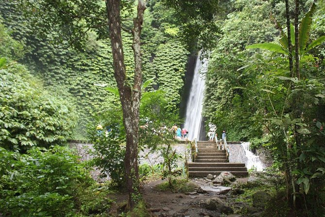 North Bali Tour - Visiting Rice Terrace, Lake, Waterfall, Temple and Hot Spring