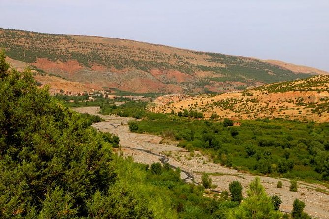 Marrakech High Atlas, Toukbal National Park, and Imlil Private Day Trip photo 9