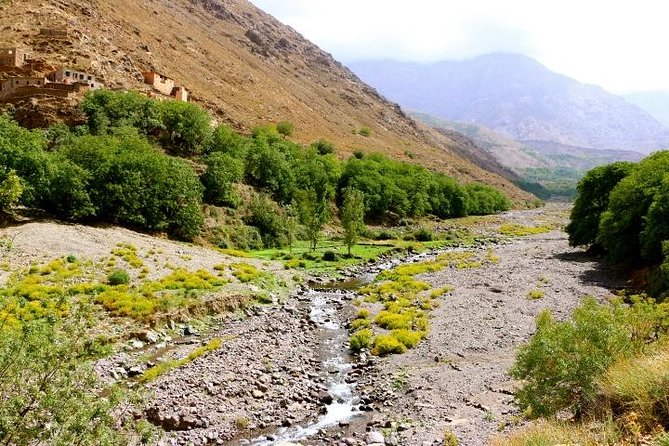 From Marrakech: Private Daytrip to High Atlas, Toubkal National Park and Imlil photo 8