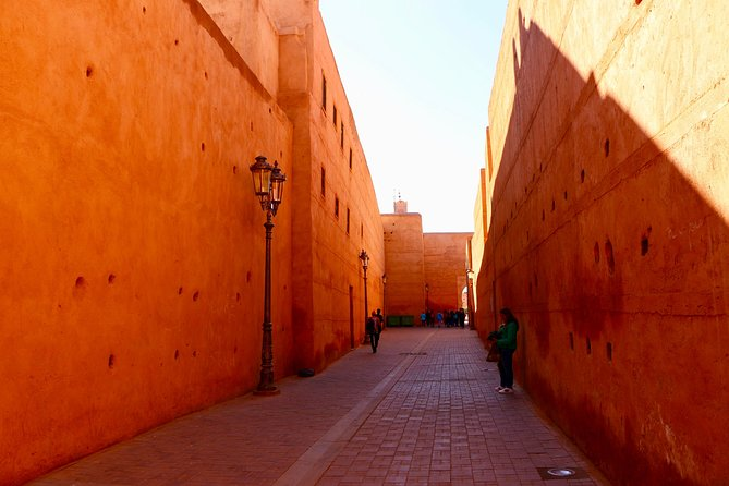 From Agadir: Private day trip to Marrakech