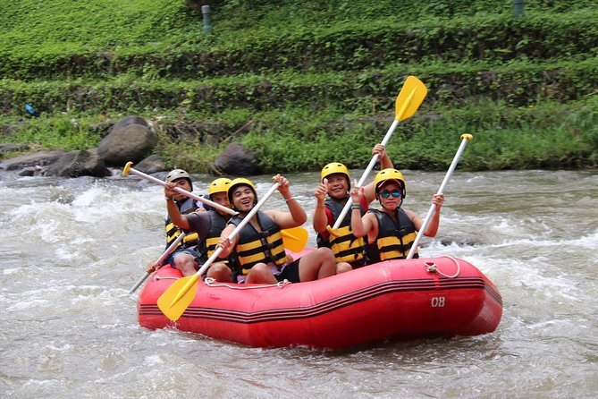 Half-Day Whitewater Rafting with Ubud Hotel Transfers