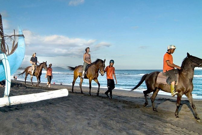 Bali Horse Riding and Ubud Full Day Tour