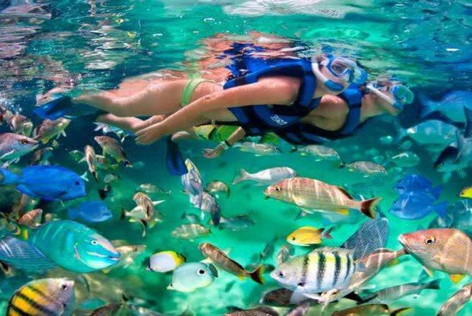 Snorkeling Trip to Giftun Island