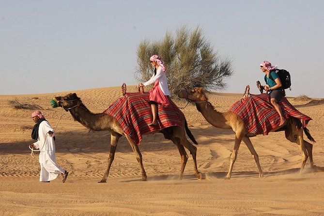 Desert Safari Tour, 6 Hour Fun, Family & Friends, Camel Ride & Dinner Included.