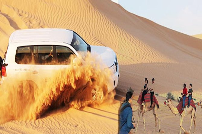 Evening Desert Safari Dubai with BBQ Dinner (Pick Up By Bus)