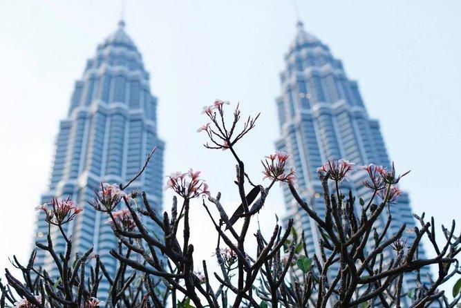 Kuala Lumpur City Tour - Private