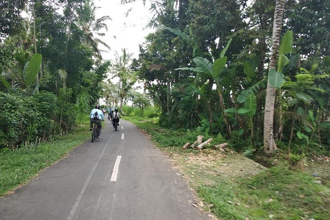 Bali Cycling with ATV Quadbike