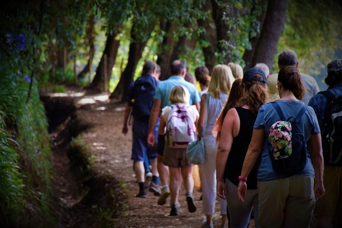 Paradise Valley To Rochon / Willow Craft Walk