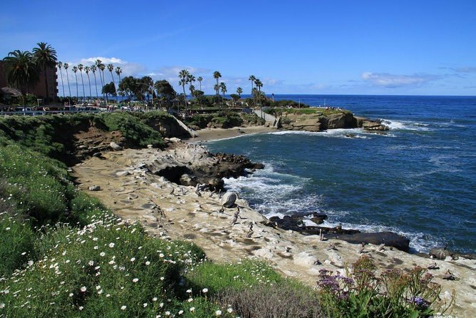 San Diego Day Trip from Los Angeles by Train and Special Open Air Touring Van photo 2