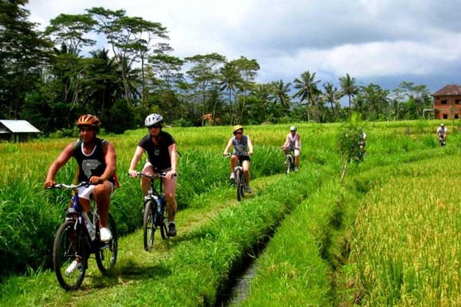 Bali Cycling and Tanah Lot Sunset Tour
