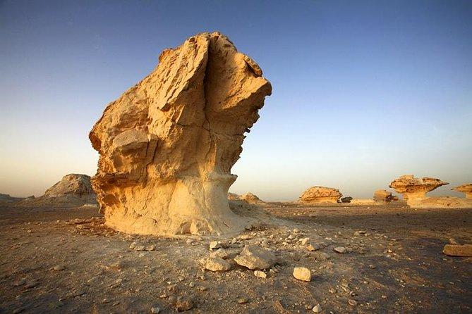 Privater Tagesausflug in die Bahariya-Oase mit Black Sahara ab Kairo