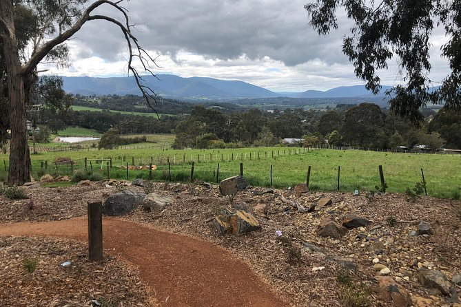 Yarra Valley Wine Tour inc lunch with a glass of wine, tastings and chocolate photo 9