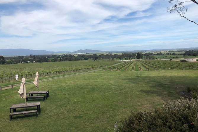 Small Public Mornington Peninsula Winery Tour plus lunch with a glass of wine