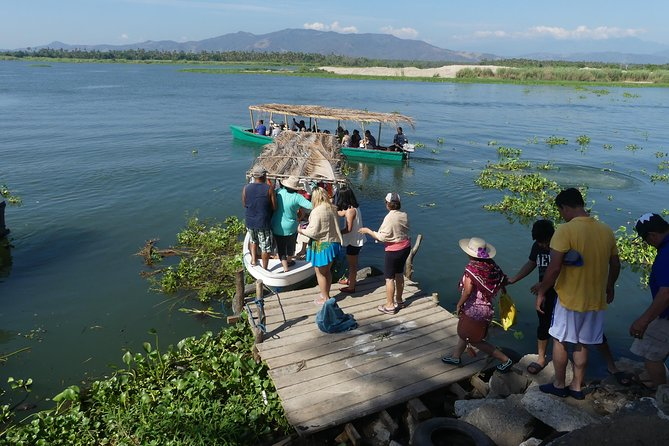 Turtle Release Aztec Religious Temazcal Experience and Jungle Coyuca Lagoon Tour