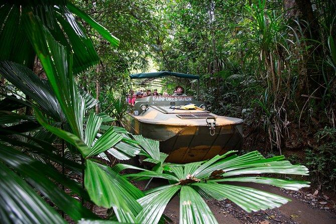 Classic Kuranda by Skyrail and Scenic Railway Including Rainforestation, Koala and Wildlife Park and Pamagirri Aboriginal Experience
