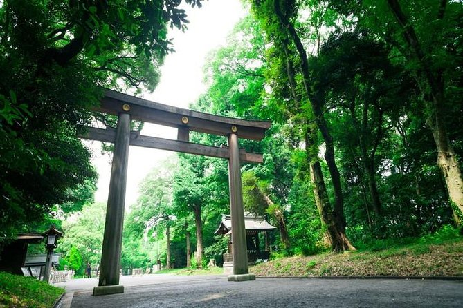1 Hour Guided  Walking Tour of Meiji Shrine