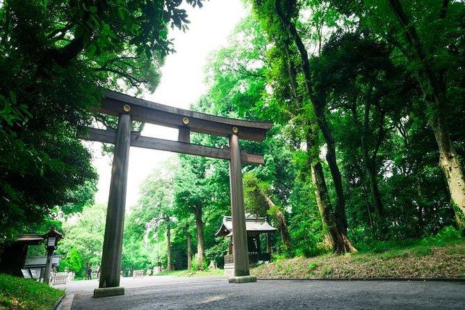 Meiji Jingu Shrine Highlights Tour with National Licensed Guide