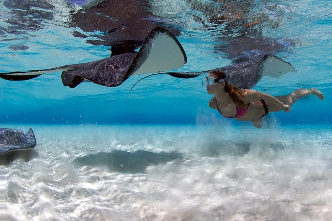 Stingray City and Snorkel Jet Ski Tour