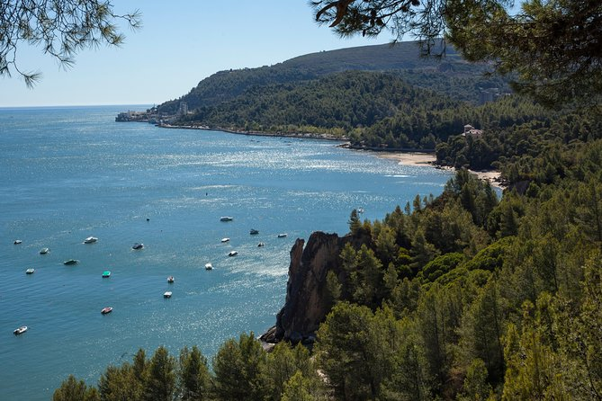 Arrábida: Full Day Tour of the Town with Wine Tasting - 8 Hours